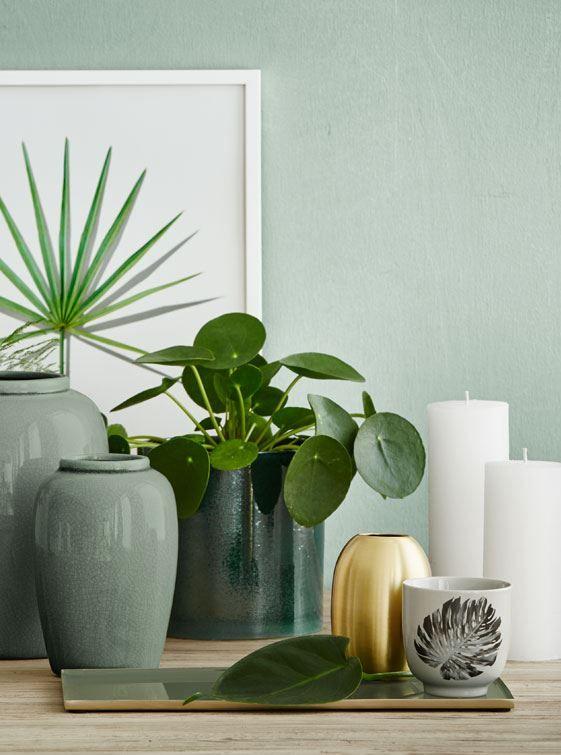 Botaniske elementer og det grønne farvemix går igen i alle typer af design og tekstilprint. Kombinationen med levende grønne planter kan med fordel anvendes i boligindretningen som botaniske skulpturer, der hænger og står i vaser, flasker og skåle. #inspirationdk #BotanicLiving #Indretmedplanter #planter #inspiration #InspirationOnline