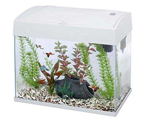 Fish R Fun White 20L Aquarium