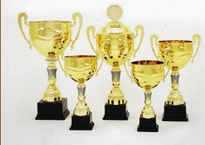Cupa Incepatorului, editia a III-a, Squash Ploiesti – turneu local de squash organizat pe 25-26 ianuarie 2014 de club pentru clientii sai  http://www.squashmania.ro/ai1ec_event/cupa-incepatorului-editia-a-iii-a-squash-ploiesti/?instance_id=314