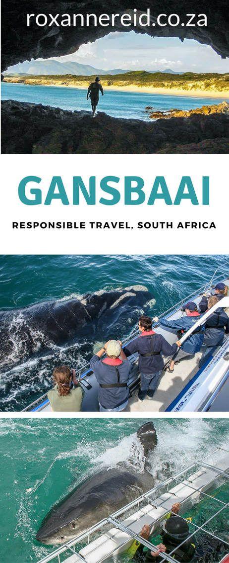 Gansbaai, responsible travel in South Africa #Gansbaai #travel #SouthAfrica