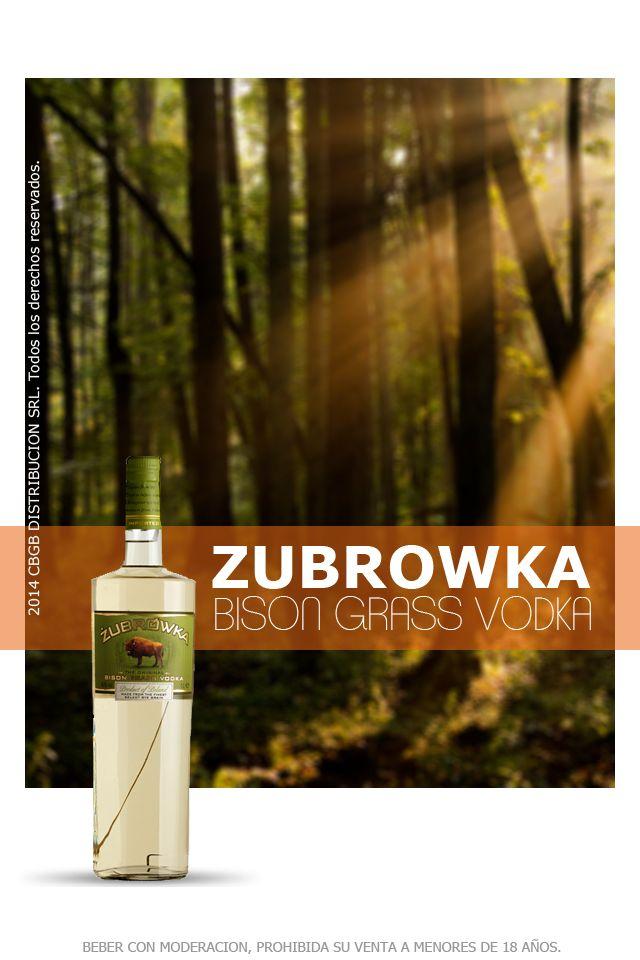 Zubrowka es un vodka premium polaco. El nombre de la marca fue dado en honor al bisonte, nativo de Bialowieza, por su fuerza, majestad y nobleza. Es increiblemente suave, dulce en el paladar y con sabores de lavanda, jasmin, vainilla y coco. Dentro de cada botella genuina de Żubrówka se puede encontrar una hoja de la hierba del bisonte; éste es el motivo por el cual el vodka tiene su particular gusto, aroma y color amarillento. Se toma puro, saliendo del frezzer o sobre hielo.