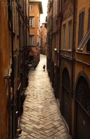 Lucca is a well preserved walled city, renowned for its preservation of the historic Renaissance architecture.