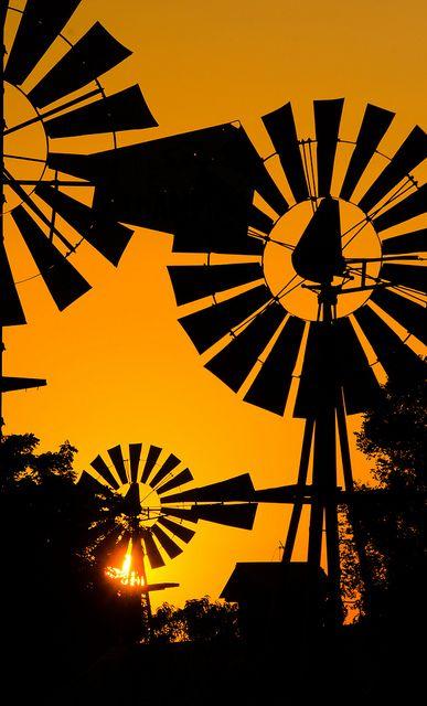 Windmills ..rh