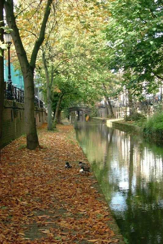 Utrecht, Netherlands Copyright: Mario Verbeek