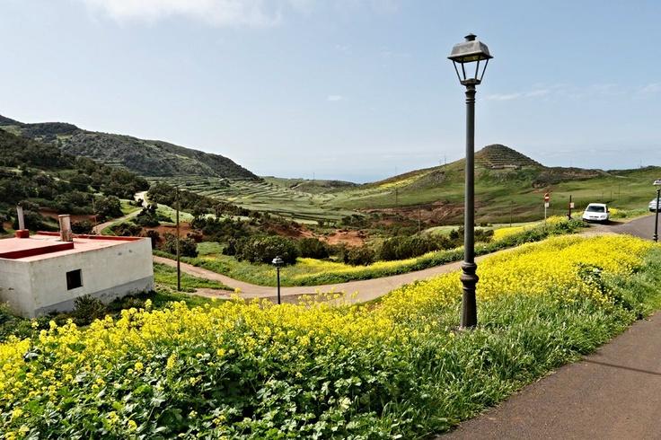 Landscape in Tenerife  #Tenerife #Hotel #Costaadeje #Hotellujo