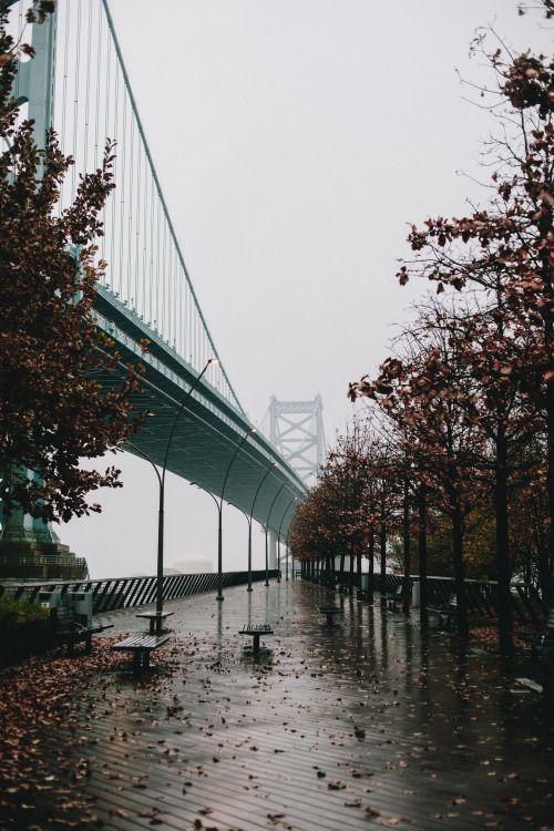 Image result for santa monica pier fog tumblr