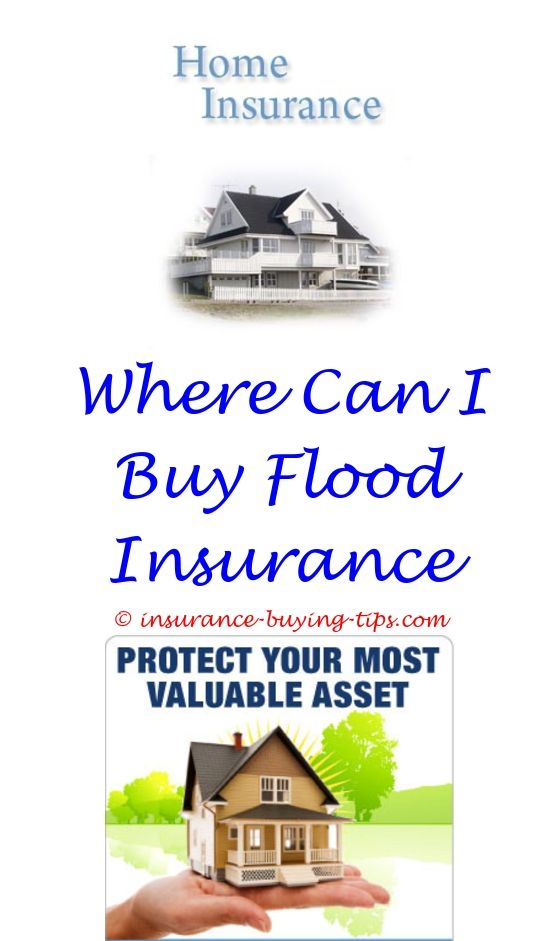 nyc buying a used car plates registration insurance - can dependent buy separe health insurance plan.insurance rules when buying a new car should i buy insurance for a rental car advantages of buying online insurance policy 5535958150