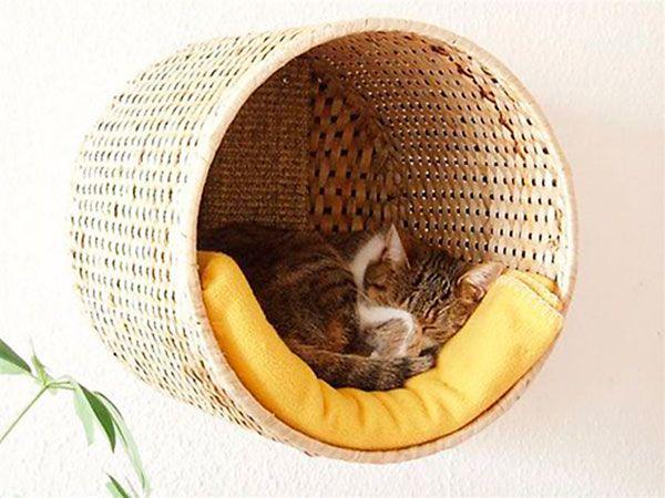 Dicas da Vila do Artesão - Dica vapt-vupt de cama para bichinhos