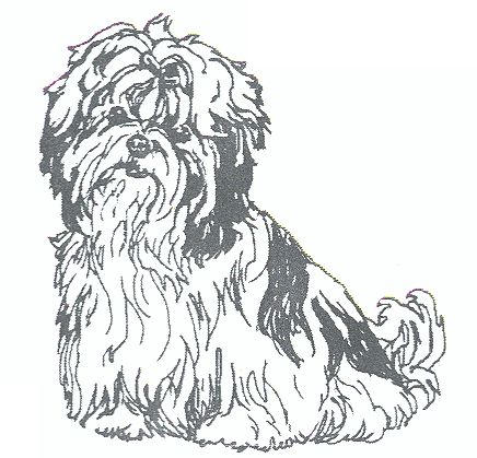 10 Best Images About Coloring Pages On Pinterest Peace Shih Tzu Coloring Pages