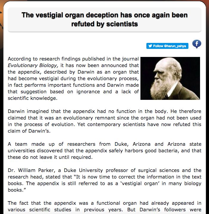 The vestigial organ deception has once again been refuted by scientists