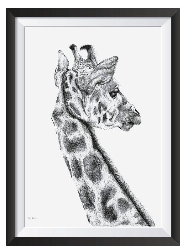Giraffe illsutrated with Pen by Nicoll van der Nest
