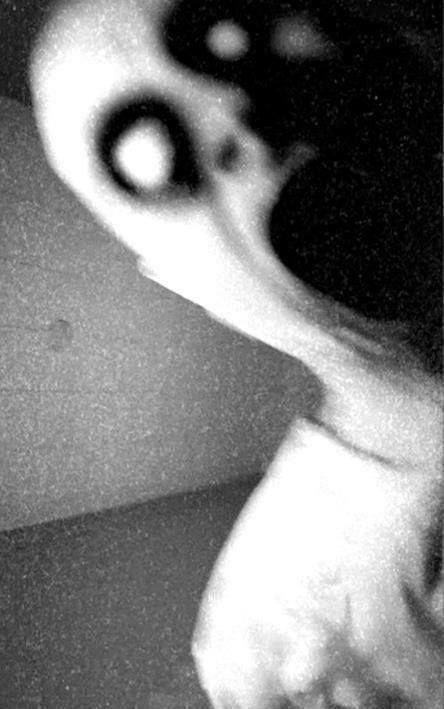 """Bianca- Cette image d'un fantôme represent le fantôme de l'histoire au L'opèra de Paris. J'ai choisi cette photo parce qu'il montrer l'apparence de le fantôme. Le fantôme a une tête de mort, il est très mince , sa peau est jaune et il avait deux trous pour les yeux et il porte une costume noir. """"Il pensait que c'était un spectateur, mais lorsqu'il l'a vu de près, il s'est rendu compte que cet effrayant personnage avait un tête de mort à la place du visage! Il était très mince, sa peau était…"""