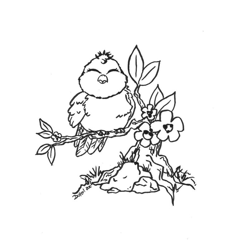 birds and flowers coloring pages | Cute bird flowers branch | Adult Coloring Pages ...