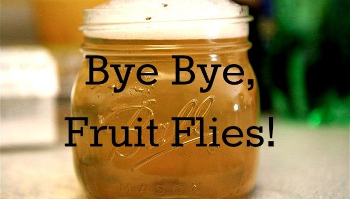 Get rid of fruit flies !! Use a wide mouth jar and fill it 1/2-3/4  w apple cider vinegar. (No other vinegar will work, btw. It has to be apple cider vinegar.)  Add a few drops of dish soap, then fill the rest of the jar with water until the bubbles reach the rim of the jar.  Finally, in the words of my lovely friend…. WATCH THE CARNAGE.  If you leave that jar alone for a few hours, the fruit flies will come. TRUST ME. THEY WILL COME. Check it: - See more at: http://subu