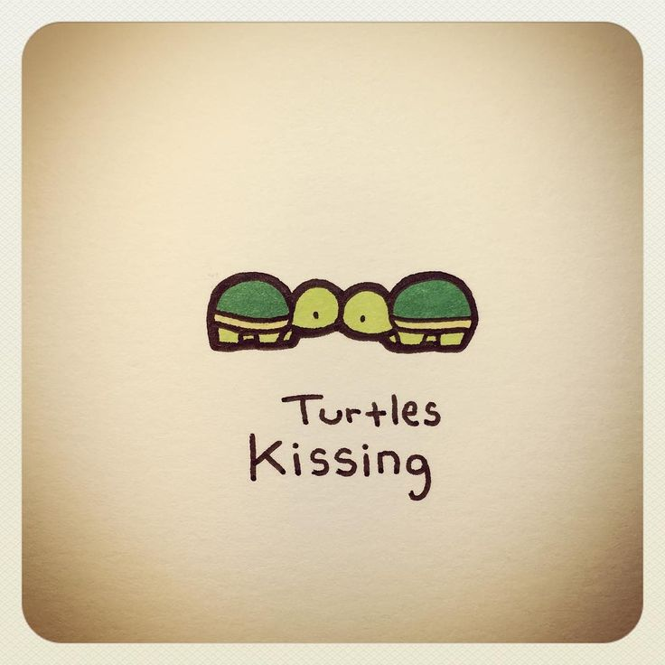 Turtle kissing