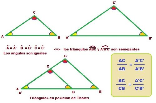 #Geometria Teorema de tales para triángulos semejantes