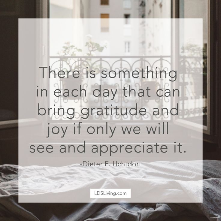 There is something in each day that can bring gratitude