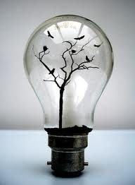 Love this idea of the light bulb acting like a bird cage!