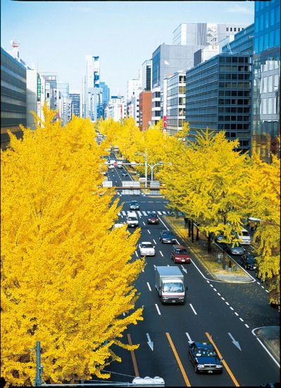Midosuji,Osaka