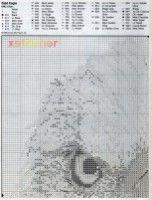 Gallery.ru / Фото #4 - Совы и орлы:разные схемы - frango