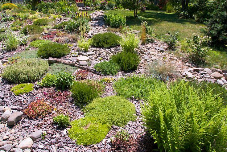 Hillisde plantings sunny rocky sloped alpine rock garden for Sloped rock garden designs
