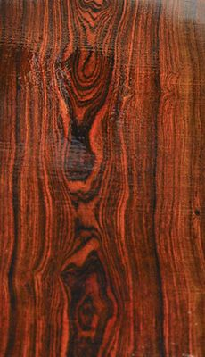 Cocobolo Flitch B2291-B2296:  This is an outstanding, one of a kind, Cocobolo log! The log has amazing size for the species and is clear of defects! Boards exhibit fantastic grain patterns and color! This is a very special log!!!  Cocobolo is a true rosewood.