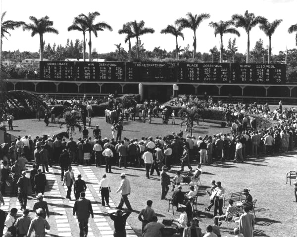 Gulfstream Park crowds around walking ring before the races in the year 1948
