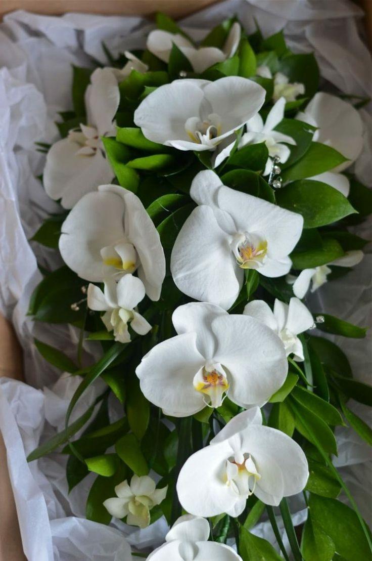 Die besten 25 weie orchideen ideen auf pinterest orchidee 50 kreative ideen fr den perfekten brautstrau thecheapjerseys Choice Image
