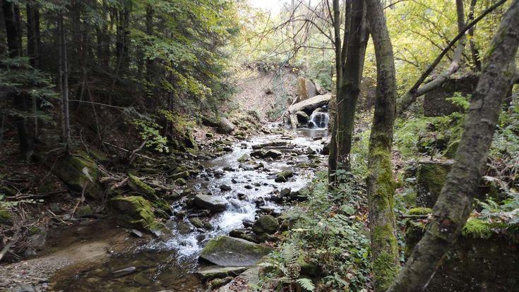 Zdjęcia parków, skansenów i rezerwatów | Wczasy pod gruszą Magurski Park Narodowy. http://www.domkiwbeskidach.pl/noclegi-jaslo.html