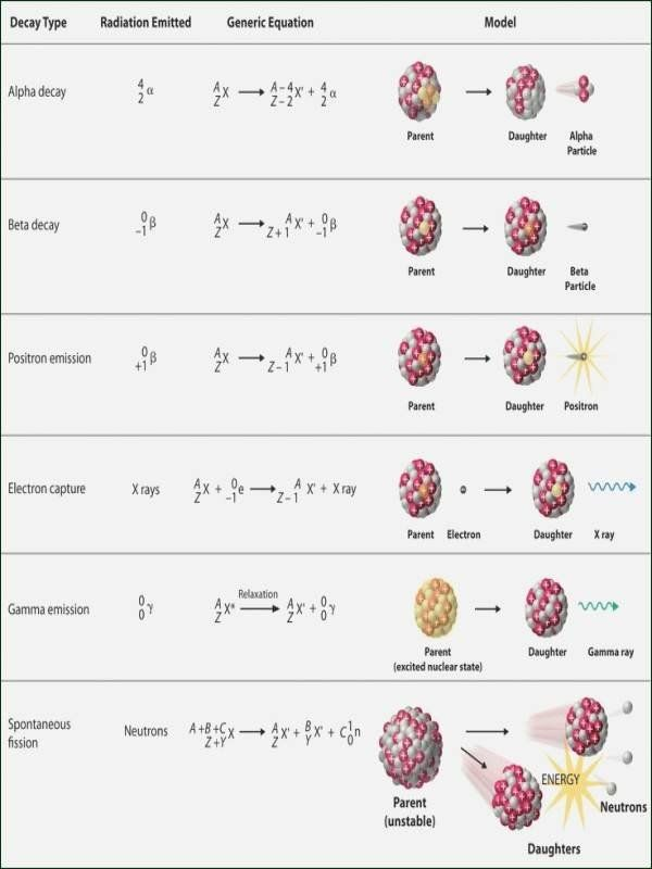 Hunting The Elements Video Worksheet Luxury Nova Hunting The Elements Worksheet Nuclear Physics Chemistry Worksheets Nuclear Reaction