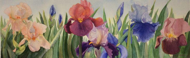 The Iris Farm Watercolour by Heather Plowman