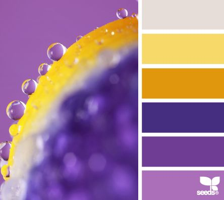 I found this fab & funky purple and yellow palette - sort of hints of mustard and a splash of pale grey too. Let's try to match it perfectly, and find some new favourites too. Enjoy! x