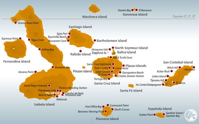 Galapagos Islands Tours, Galapagos Cruises, Ecuador and Peru Tours