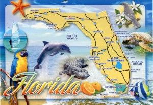 Florida Festivals gets 5 stars out of 5 for their great line up of festivals and events for the 2013 and 2014 festivities. http://festivals4fun.com/florida-festivals-and-events/