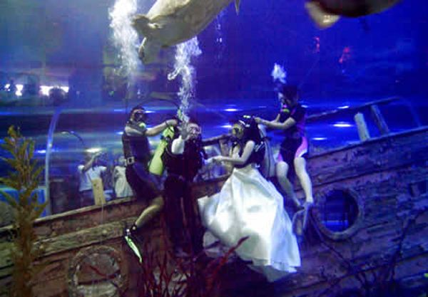 Wedding in a water park