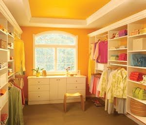 Love the colors of this closet. This blog has several pics of other closets as well...