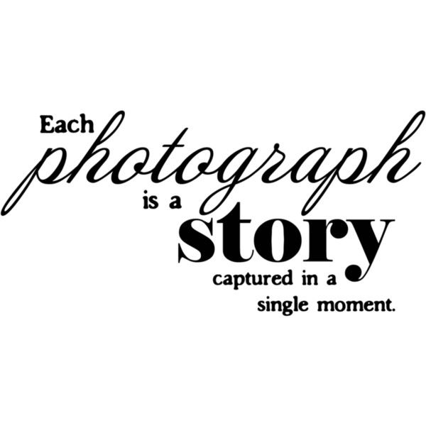Photographic Memory Quotes: 537 Best Images About Writing On Pinterest