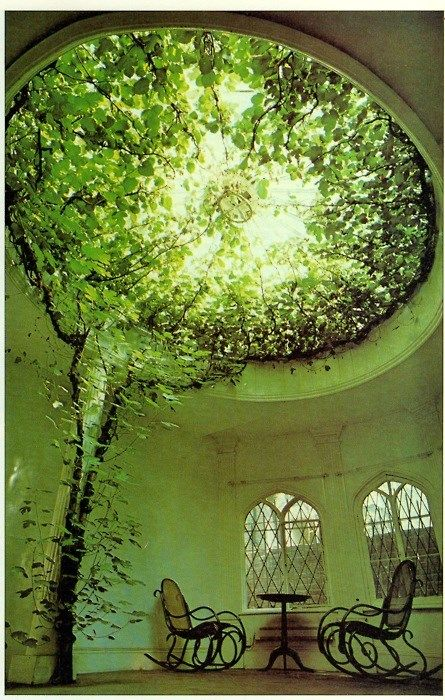 Wow-- this ceiling of greenery makes the entire room look green.