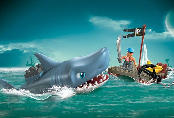 Animal Zoo Life:  Shark Sharks Shark pictures Shark facts Facts ...