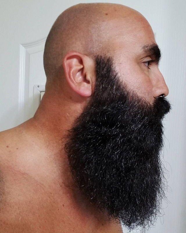 1000 Ideas About Bald Men Styles On Pinterest: 684 Best Beard And Bald Images On Pinterest
