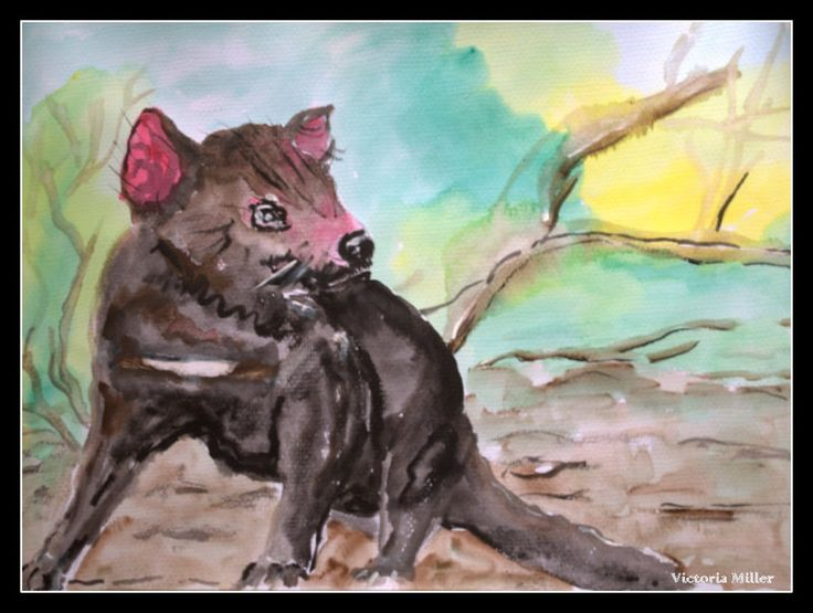 One of Australia's beauties the Tasmanian Devil. Art by Victoria Miller