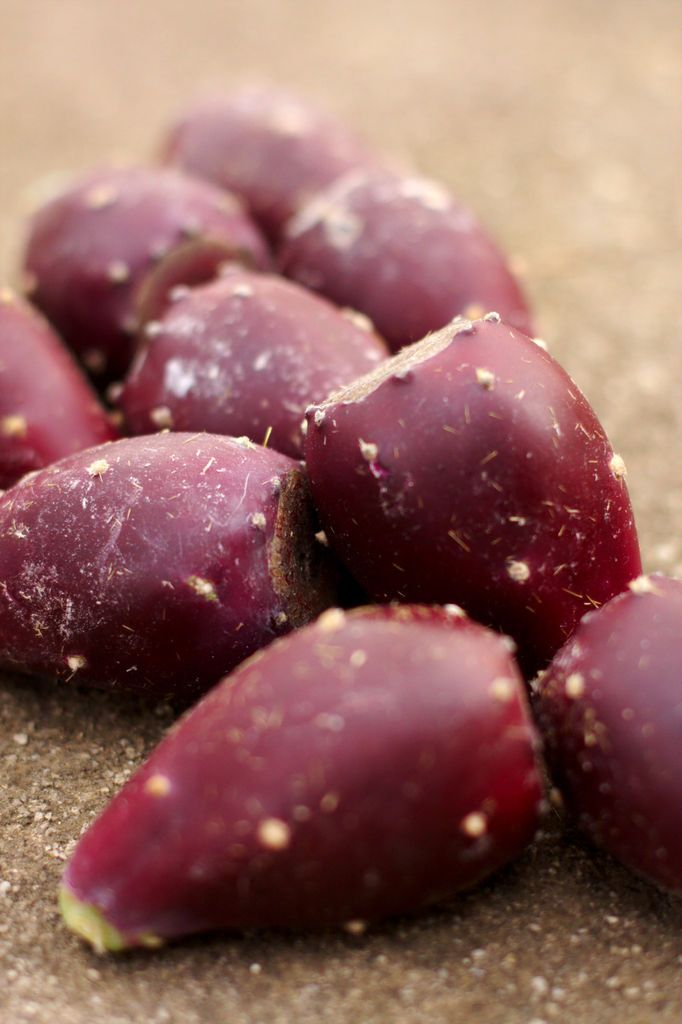 How to Prepare Save Prickly Pear Fruit