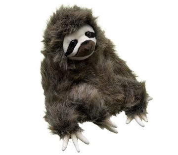 Get a plush when you donate to symbolically adopt a three-toed sloth and help WWF's global conservation efforts.