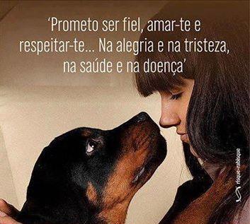 EU PROMETO! <3 #petmeupet #amoanimais #cachorro #filhode4patas #maedecachorro #paidecachorro #amomeucachorro