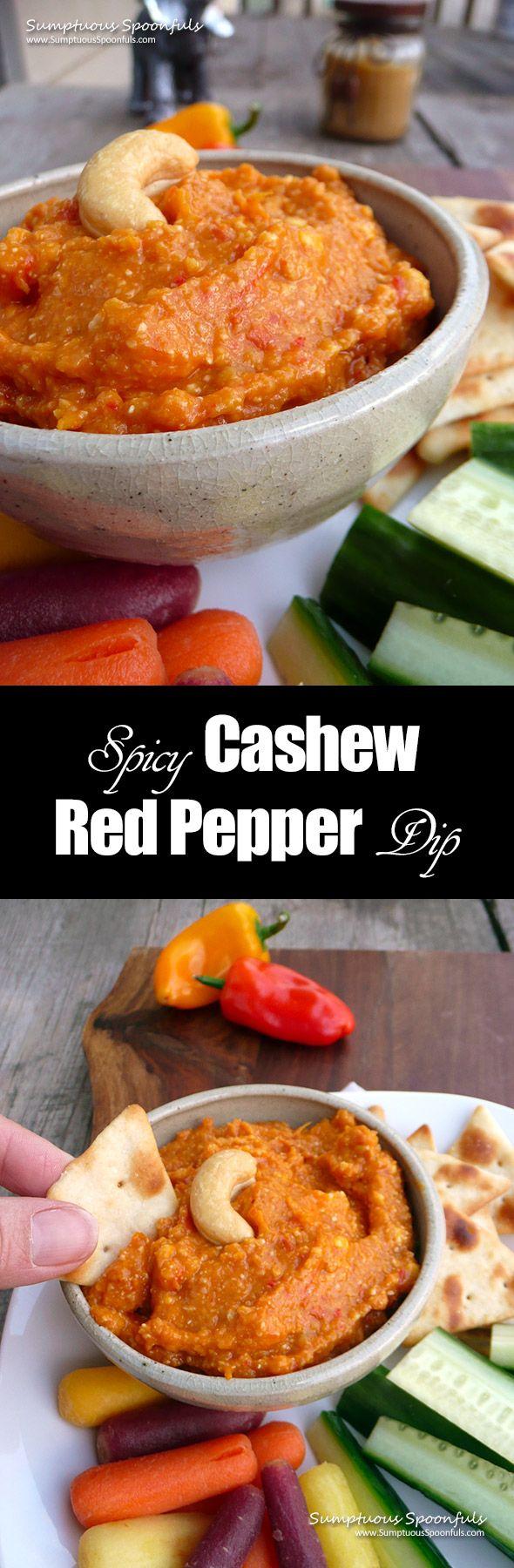 Spicy Cashew Red Pepper Dip ~ Sumptuous Spoonfuls #healthy #hot #pepper #dip #recipe