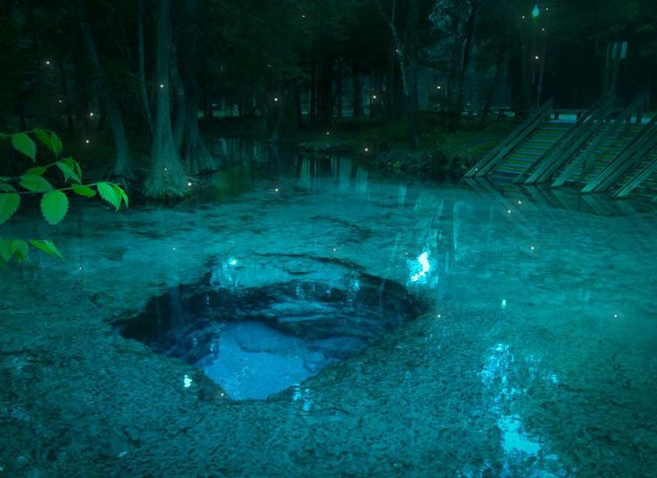 Ginnie Springs - Located on the Santa Fe River in High Springs Florida, Ginnie Springs is one of the clearest springs in Florida. The 72-degree water is perfect for river tubing, swimming, snorkeling, and scuba diving.