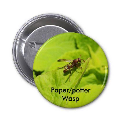 Vespidea paper/Potter wasp round button.