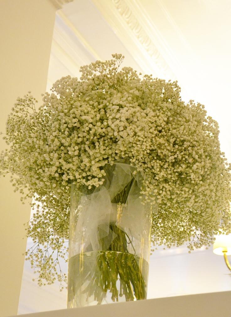 #Gypsophila paniculata, detta volgarmente velo di #sposa o fiore della nebbia o nebbiolina ...