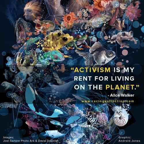 TIME FOR US TO PAY UP : Take Action and do something to help our planet. We are Racing Extinction.