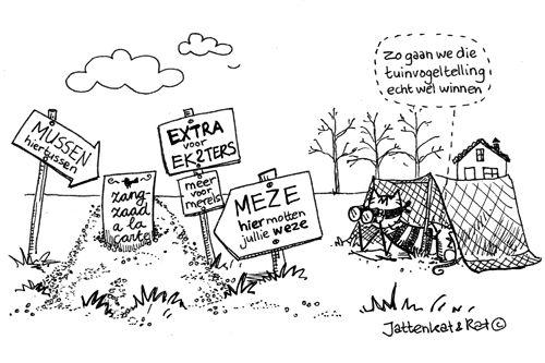 tuinvogeltelling -